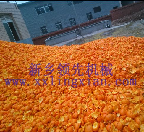 脐橙剥皮榨汁设备 菠萝剥皮榨汁设备 西番莲剥皮榨汁设备