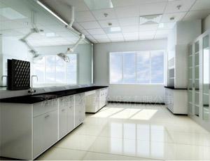 钢木实验台,全钢实验台,通风柜,天平台