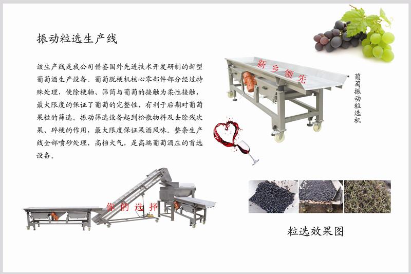 供应葡萄粒选机 -新乡领先机械
