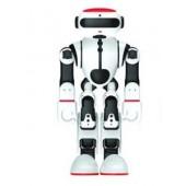 功夫瑜伽机器人豆比机器人