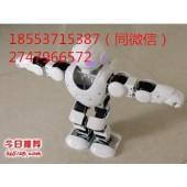 跳舞表演机器人阿尔法机器人