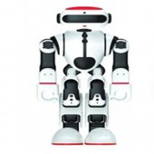 卡特会踢足球的功夫瑜伽机器人