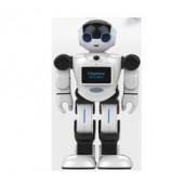 可编程会跳舞会唱歌能通话的城市漫步机器人