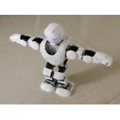 跳舞表演可编程的阿尔法机器人