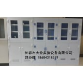 四平实验室全钢结构实验柜,药品柜价格