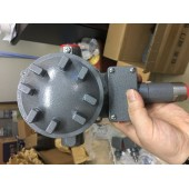 309803-WG307P (45-550PAI)美国SOR压力开关