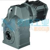英国radicon齿轮泵