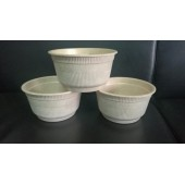 水稻秸秆生态全降解餐具及包装制品生产流水线