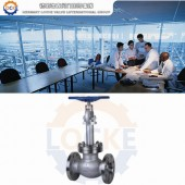 进口液化天然气截止阀性能参数,报价/价格,图片
