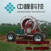 平移轻型喷灌机 提供各种型号 质量保证