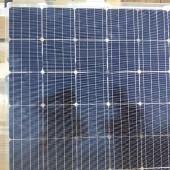 协鑫双玻单晶太阳能组件光伏板出售平价上网首选