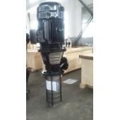 恩达泵业QLY42-68液下泵